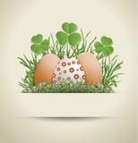 Papel de huevo de Pascua Imágenes de archivo libres de regalías