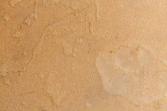 Papel de la cartulina del cartón de Brown Imágenes de archivo libres de regalías