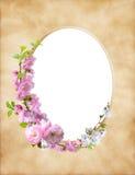 Papel de la hoja de Olad con la decoración floral foto de archivo