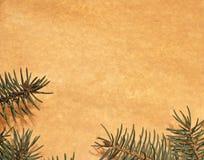 Papel de la vendimia adornado con las ramificaciones del abeto Fotografía de archivo