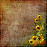 Papel de la vendimia con las flores Fotos de archivo