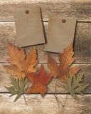 Papel de madeira da extremidade dois Fotografia de Stock