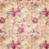 Papel de parede antigo das rosas Fotografia de Stock