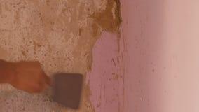 Papel de parede cor-de-rosa decr?pito em uma parede, reparo da casa Homem que descasca o papel de parede velho com esp?tula espec vídeos de arquivo