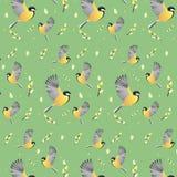 Papel de parede da mola com pássaros Fundo imagens de stock