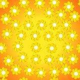 Papel de parede das flores Imagens de Stock Royalty Free