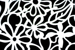 Papel de parede decorativo com as flores brancas no fundo preto Foto de Stock Royalty Free