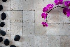 Papel de parede dos termas da beleza com os seixos da massagem do preto do shui do feng Imagens de Stock Royalty Free
