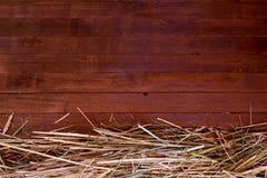 Papel de parede dourado do fundo da textura da palha do feno da queda do outono Fotos de Stock