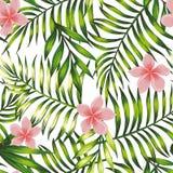 Papel de parede exótico do teste padrão sem emenda tropical das folhas e das flores ilustração do vetor