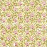 Papel de parede floral sem emenda desvanecido gasto do teste padrão Foto de Stock