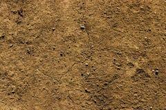 Papel de parede seco quente à terra do fundo da argila rochoso fotos de stock