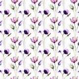 Papel de parede sem emenda com as flores selvagens da mola Fotografia de Stock