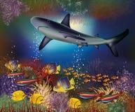 Papel de parede subaquático com tubarão Fotos de Stock