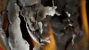 Papel de queimadura através do centro em um fundo preto vídeos de arquivo