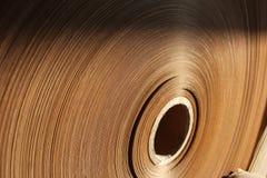 Papel de rodillo Imagen de archivo