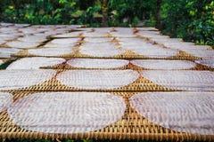 Papel de tallarines de arroz Imagen de archivo