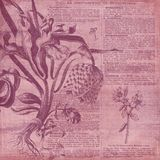 Papel del collage del fondo del vintage - ejemplo botánico - papel de Digitaces del collage de la horticultura ilustración del vector