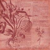Papel del collage del fondo del vintage - ejemplo botánico - papel de Digitaces del collage de la horticultura stock de ilustración