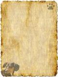 Papel del vintage con el perro basset Imagen de archivo libre de regalías