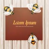 Papel em uma mesa de madeira com os zangões das abelhas em cores agradáveis macias Imagem de Stock Royalty Free