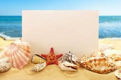Papel en blanco con las conchas marinas en la playa Foto de archivo