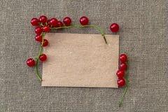 Papel en blanco y pasa roja Imagen de archivo libre de regalías