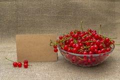 Papel en blanco y pasa roja en un cuenco Fotos de archivo