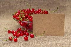 Papel en blanco y pasa roja en un cuenco Foto de archivo