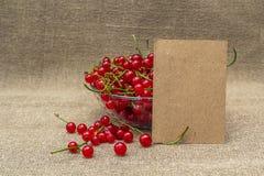 Papel en blanco y pasa roja en un cuenco Fotografía de archivo libre de regalías