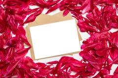 Papel en blanco y sobre con los pétalos rojos de las peonías en fondo gris fotos de archivo libres de regalías