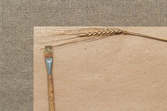 Papel, espiguilla y brocha vacíos Imagen de archivo libre de regalías