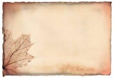 Papel hecho a mano de Brown con una hoja de arce Imágenes de archivo libres de regalías