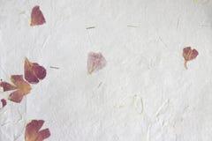 Papel hecho a mano - pétalos Foto de archivo