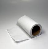 Papel higiénico Foto de archivo