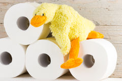 Papel higiénico con el pato divertido de la felpa Imagenes de archivo