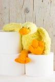 Papel higiénico con el pato divertido de la felpa Fotografía de archivo libre de regalías
