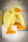 Papel higiénico con el pato divertido de la felpa Imagen de archivo libre de regalías