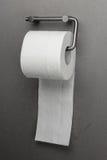 Papel higiénico em um suporte imagem de stock
