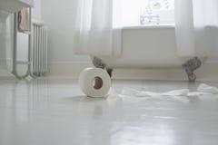 Papel higiénico en piso del cuarto de baño imágenes de archivo libres de regalías