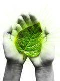 Papel humano na proteção de ambiente Imagens de Stock