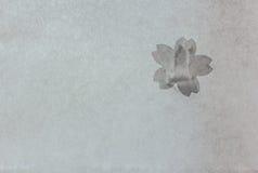 Papel japonês coberto com os remendos da flor de cerejeira Fotografia de Stock Royalty Free