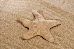 Papel-mache seastar na areia Imagem de Stock Royalty Free