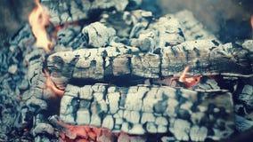 Papel, madeira e carvão queimando-se alegremente vídeos de arquivo