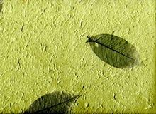 Papel natural com folhas, (definição do hight) Foto de Stock