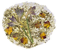 Papel natural hecho de las flores secadas Imágenes de archivo libres de regalías