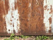 Papel pintado aherrumbrado oxidado de la pared del moho fotos de archivo