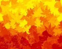 Papel pintado apenado de las hojas de otoño libre illustration