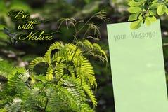 Papel pintado con la nota del mensaje Imagen de archivo libre de regalías