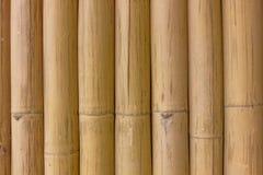 Papel pintado de bambú Fotos de archivo